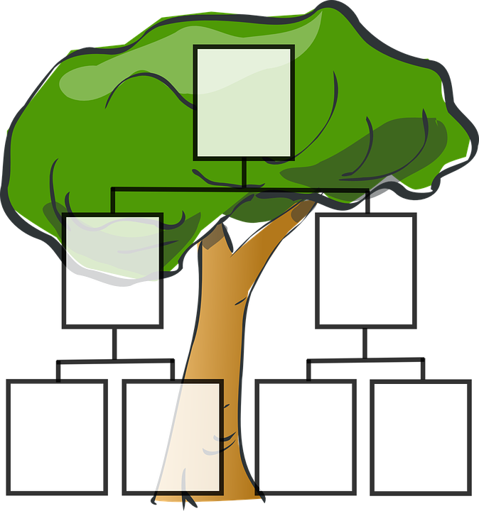 family-tree-297812_960_720.png